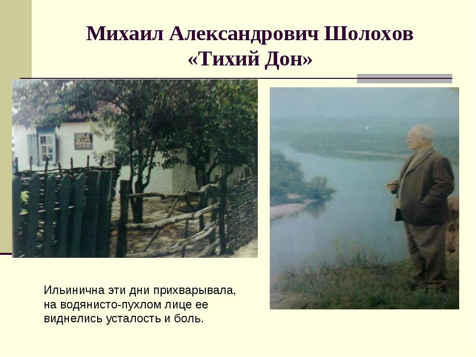 Михаил Александрович Шолохов «Тихий Дон» Ильинична эти дни прихварывала, на в...