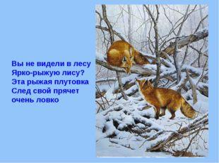 Вы не видели в лесу Ярко-рыжую лису? Эта рыжая плутовка След свой прячет очен