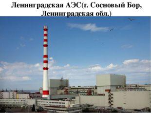 Ленинградская АЭС(г. Сосновый Бор, Ленинградская обл.)