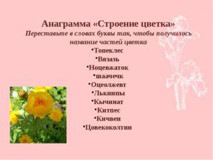 Анаграмма «Строение цветка» Переставьте в словах буквы так, чтобы получилось