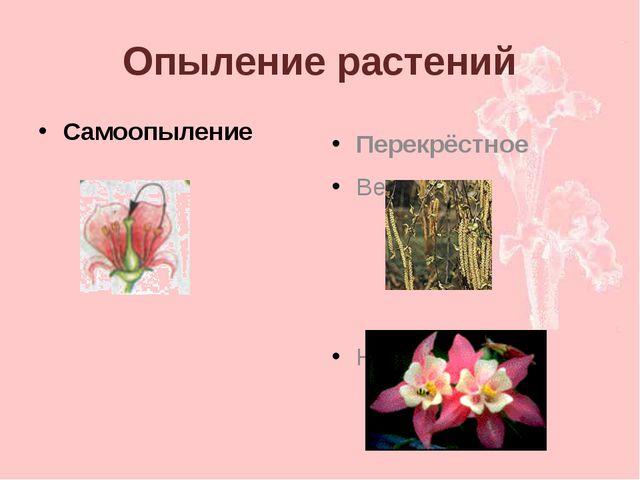 Опыление растений Самоопыление Перекрёстное Ветром Насекомыми