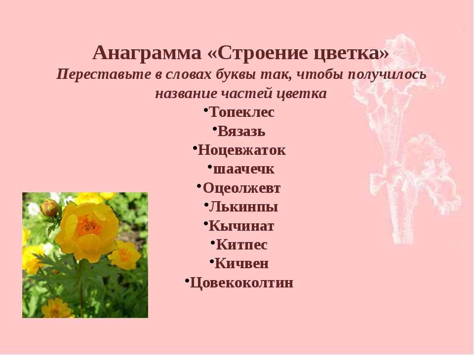 Анаграмма «Строение цветка» Переставьте в словах буквы так, чтобы получилось...