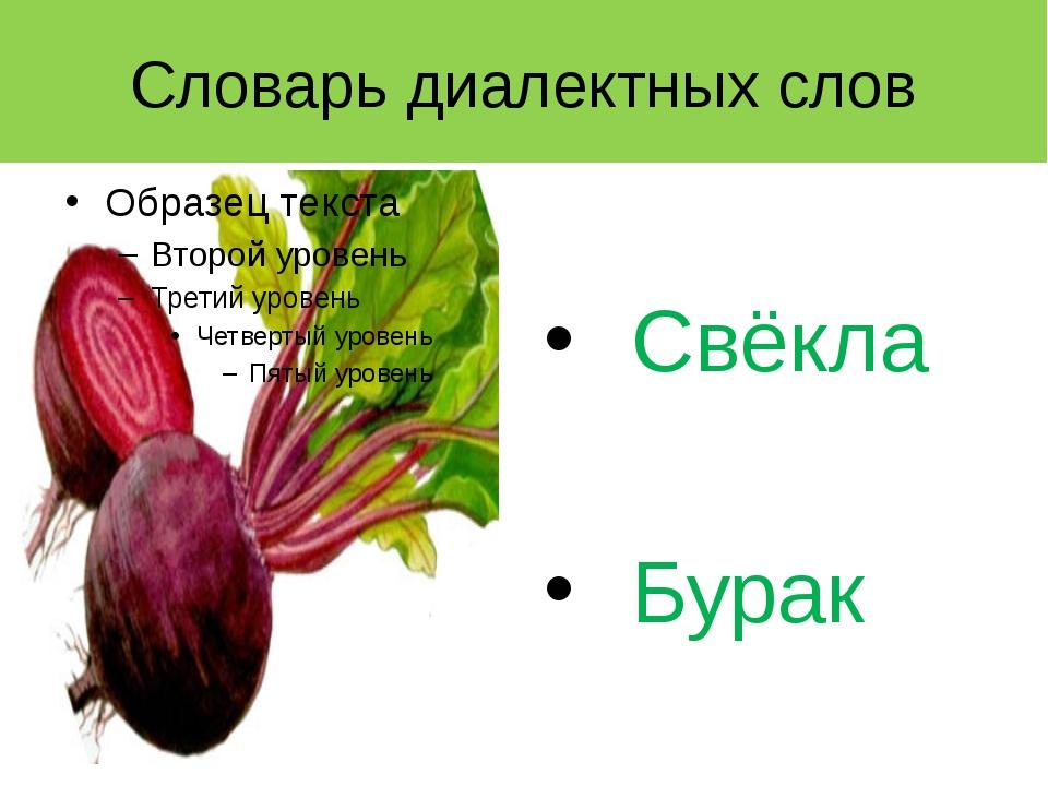 Словарь диалектных слов Свёкла Бурак