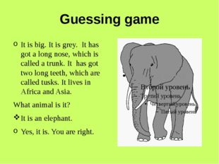 Guessing game It is big. It is grey. It has got a long nose, which is called