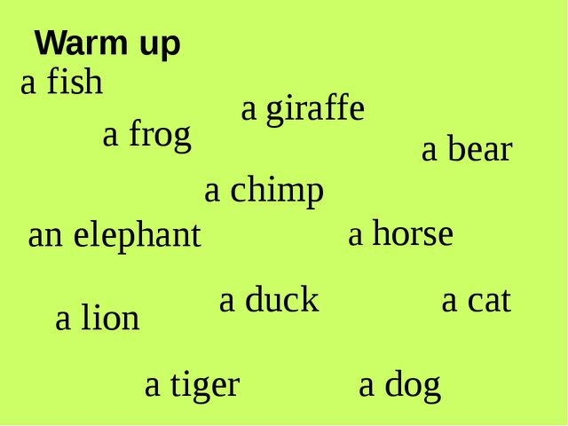 a fish a frog a chimp a horse a cat a dog a duck a lion an elephant a giraffe...