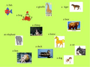 A fish a frog a chimp a horse a cat a dog a duck a lion an elephant a giraff