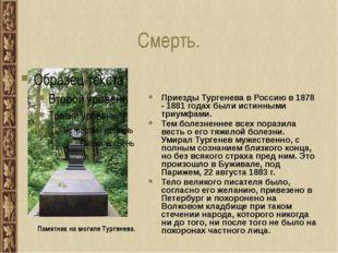 Смерть. Приезды Тургенева в Россию в 1878 - 1881 годах были истинными триумфа