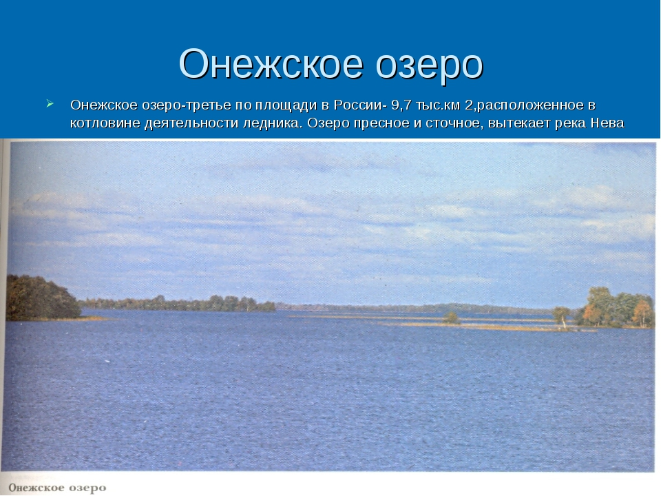 Онежское озеро Онежское озеро-третье по площади в России- 9,7 тыс.км 2,распол...
