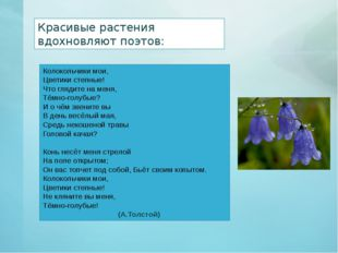 Красивые растения вдохновляют поэтов: Колокольчики мои, Цветики степные! Что
