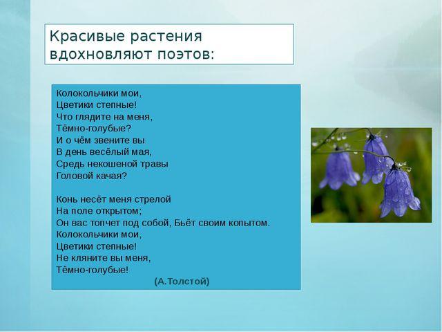 Красивые растения вдохновляют поэтов: Колокольчики мои, Цветики степные! Что...