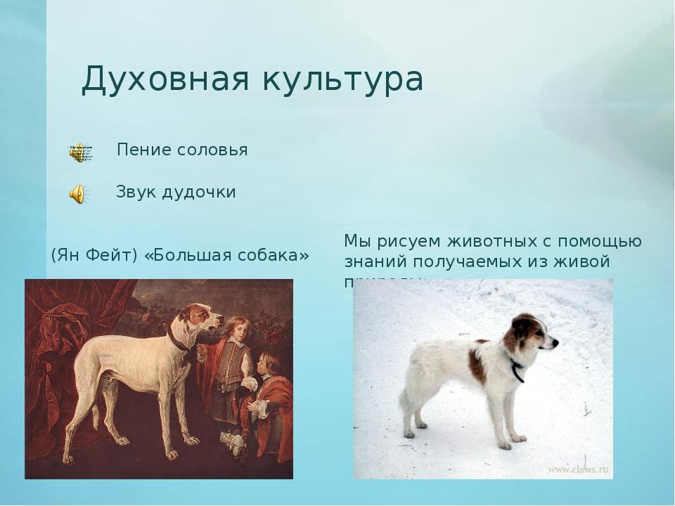 Духовная культура Пение соловья Звук дудочки (Ян Фейт) «Большая собака» Мы ри...