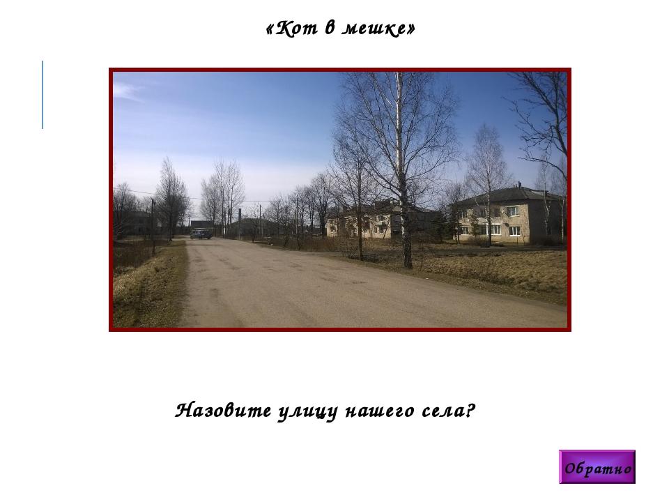 Обратно «Кот в мешке» Назовите улицу нашего села?