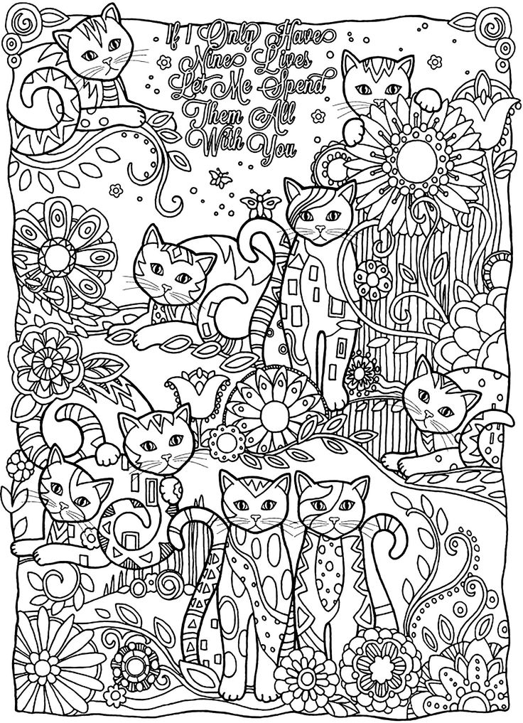 To print this free coloring page «coloring-adult-cats-cutes», click on the printer icon at the