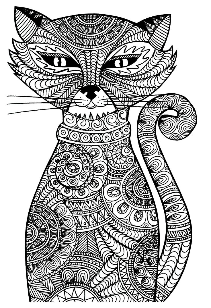 Free coloring page «coloring-adult-cat».: