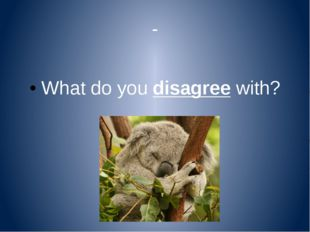 - What do you disagree with?