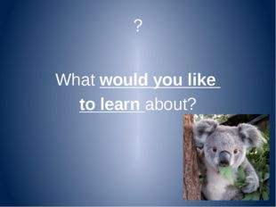 ? What would you like to learn about?