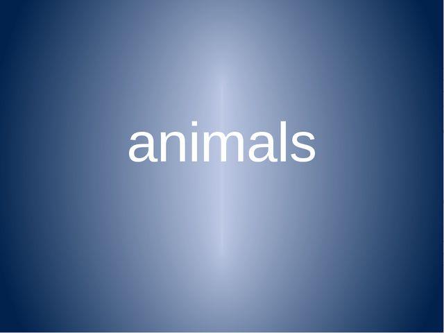 animals