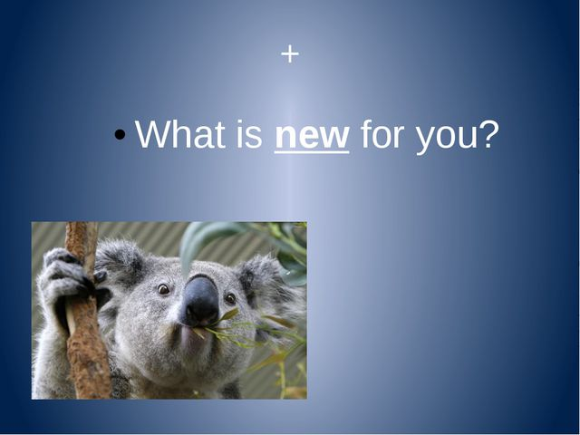 + What is new for you?