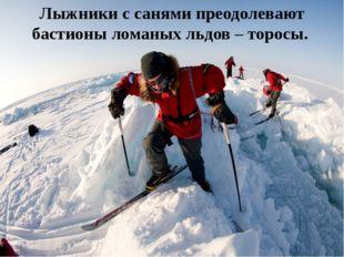 Лыжники с санями преодолевают бастионы ломаных льдов – торосы.