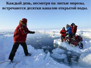 Каждый день, несмотря на лютые морозы, встречаются десятки каналов открытой в