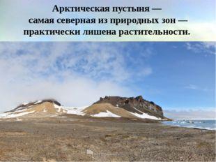 Арктическая пустыня— самая северная из природных зон— практически лишена ра