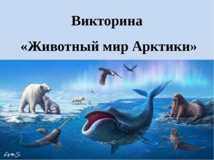 Викторина «Животный мир Арктики»