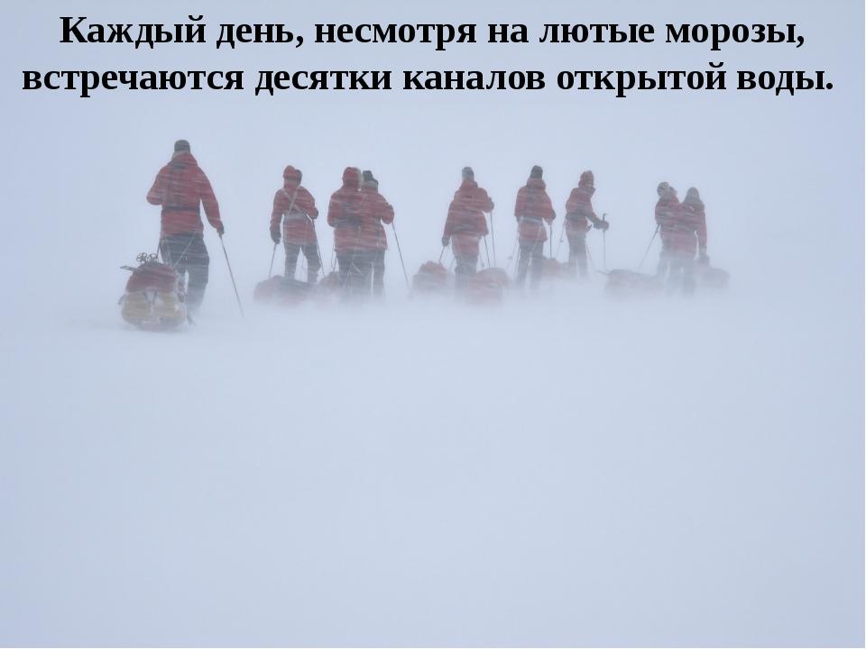 Каждый день, несмотря на лютые морозы, встречаются десятки каналов открытой в...