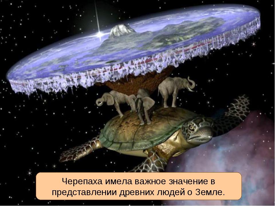 Черепаха имела важное значение в представлении древних людей о Земле.