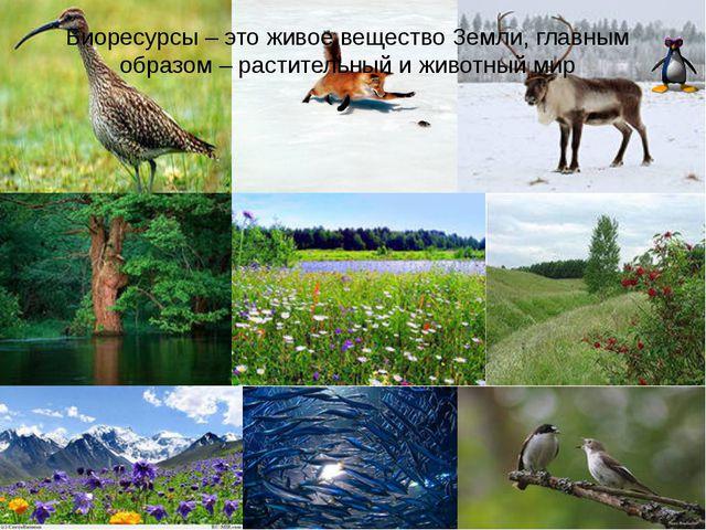 Биоресурсы – это живое вещество Земли, главным образом – растительный и живот...