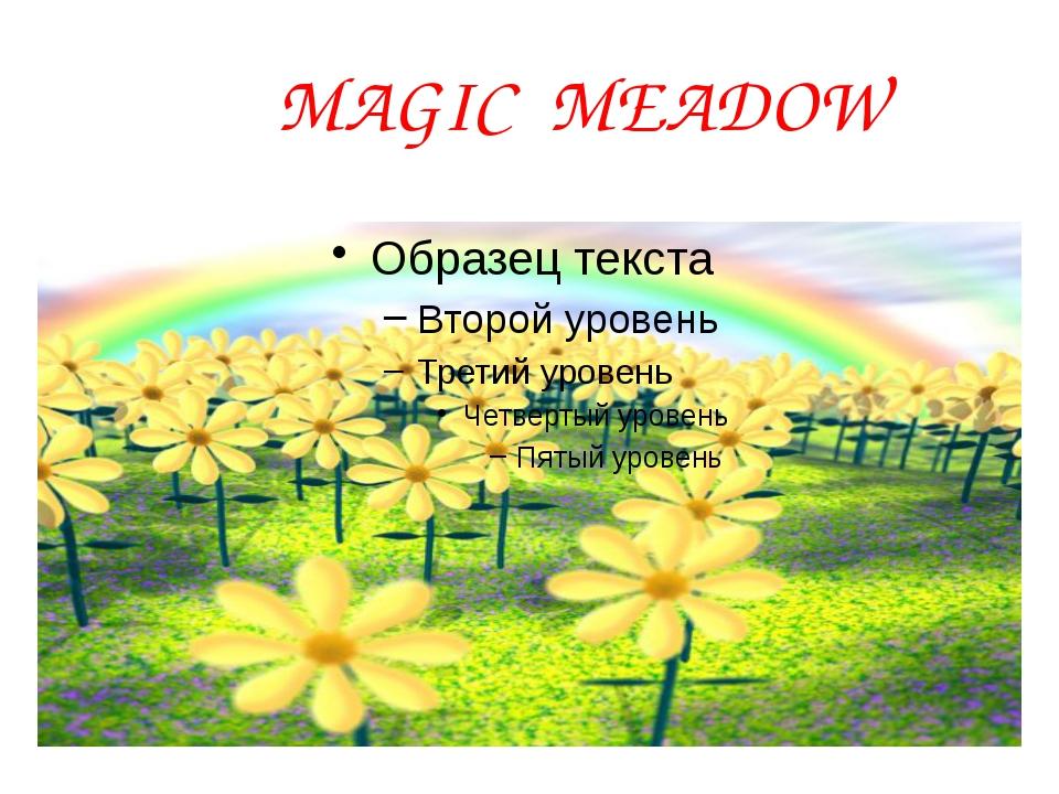 MAGIC MEADOW