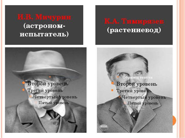 И.В. Мичурин (астроном-испытатель) К.А. Тимирязев (растениевод)