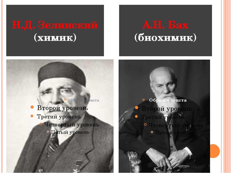 Н.Д. Зелинский (химик) А.Н. Бах (биохимик)