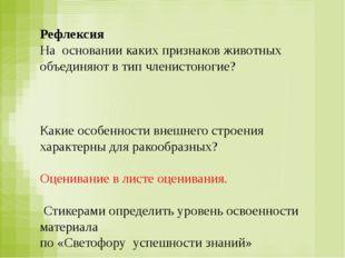 Рефлексия На основании каких признаков животных объединяют в тип членистоноги