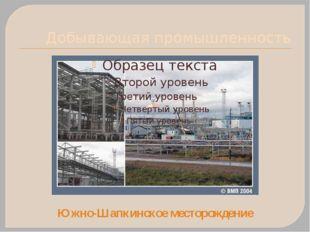 Добывающая промышленность Южно-Шапкинское месторождение