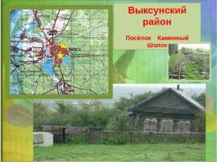 Выксунский район Посёлок Каменный Шолох