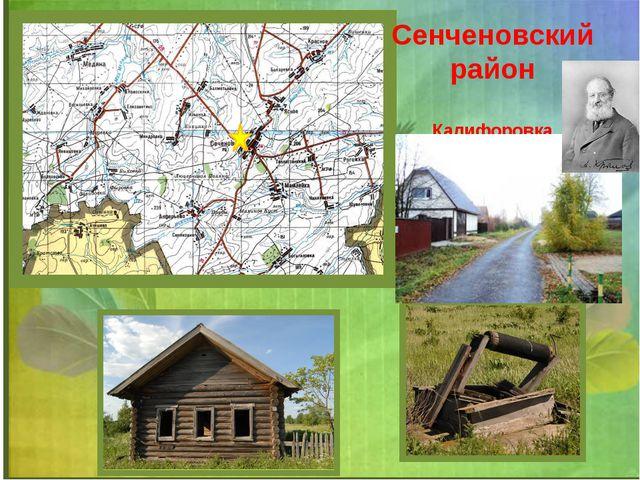 Сенченовский район Калифоровка