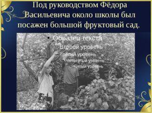 Под руководством Фёдора Васильевича около школы был посажен большой фруктовый