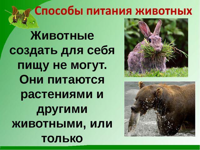Животные создать для себя пищу не могут. Они питаются растениями и другими жи...