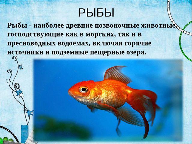 РЫБЫ Рыбы - наиболее древние позвоночные животные, господствующие как в морск...