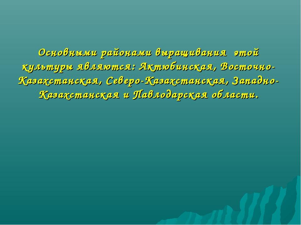 Основными районами выращивания этой культуры являются: Актюбинская, Восточно-...