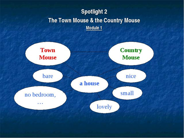 Spotlight 2 The Town Mouse & the Country Mouse Module 1