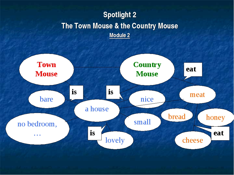 Spotlight 2 The Town Mouse & the Country Mouse Module 2