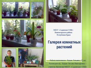 Галерея комнатных растений МБОУ «Садовская СОШ» Нижнегорского района Республи