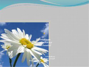 Презентация «Белый цветок» (свит-дизайн) подготовила: учитель-логопед: Пантю