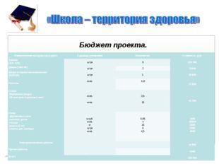 Бюджет проекта. Наименование материалов и работЕдиницы измеренияКоличество