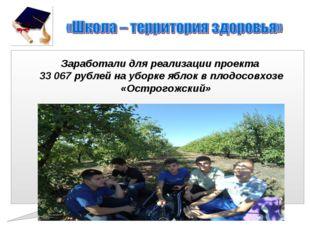 Заработали для реализации проекта 33 067 рублей на уборке яблок в плодосовхоз