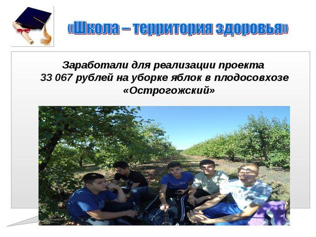 Заработали для реализации проекта 33 067 рублей на уборке яблок в плодосовхоз...