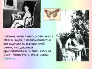 Набоков читает книгу о бабочках в 1907 в Выре, в летнем поместье его дедушки
