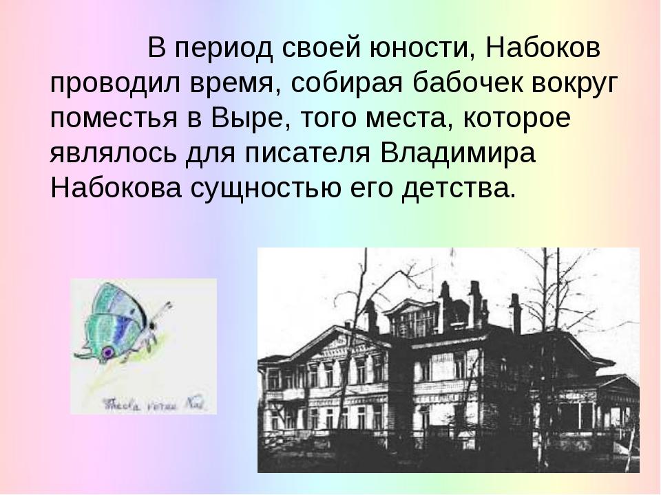 В период своей юности, Набоков проводил время, собирая бабочек вокруг помест...