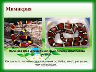 Мимикрия Молочная змея успешно имитирует окраску кораллового аспида Как прави